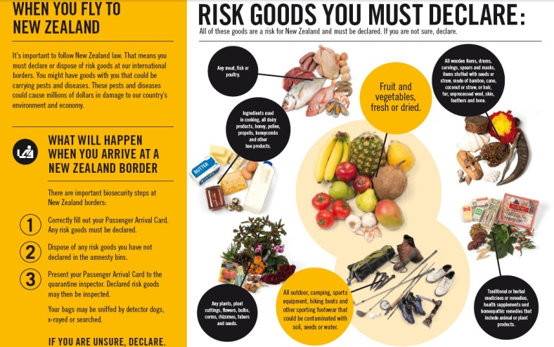 Risk Goods You Must Declare